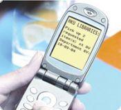 Модуль оплаты: SMS